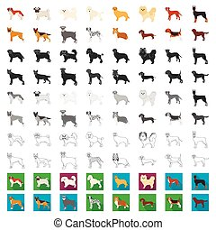 Dog breeds cartoon icons in set collection for design. Dog pet vector symbol stock web illustration.