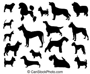 Dog breeds - Collection of silhouettes of domestic animals -...