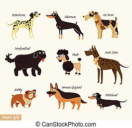 Dog breeds. Dalmatians, Bulldog, Newfoundland, Doberman,...