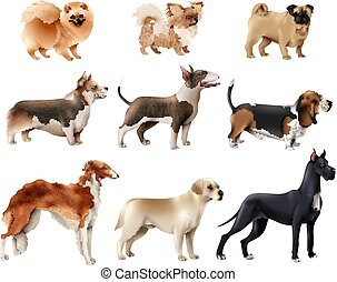 Dog Breeds Icon Set