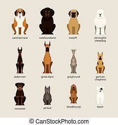 Dog Breeds Set, Giant and Large Size - Front View, Vector...