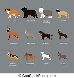 Dog Breeds Set, Giant and Large Size - Side View, Facing ...