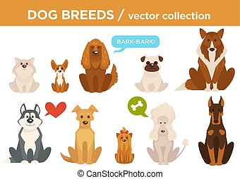 Dog breeds vector cartoon animals