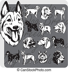 Dog Breeds - vector set