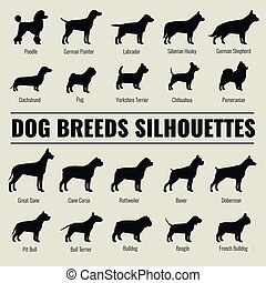 Dog breeds vector silhouettes set. Poodle and german...