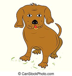 dog., brun