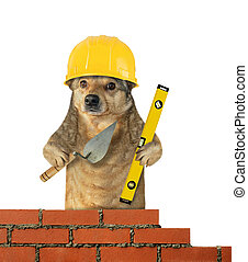Dog builds the brick wall