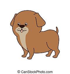dog cartoon animal
