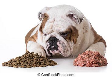 dog choosing kibble