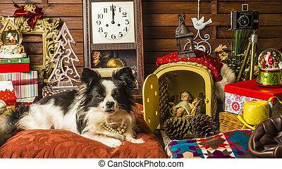 Dog Christmas greeting card