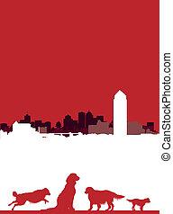 dog cityscape