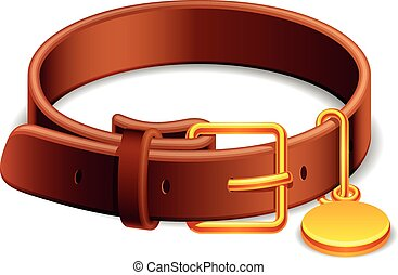Leather dog collar with a golden buckle.