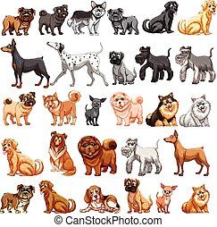 Dog collection - Different type of dogs small and big