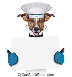 dog cook chef banner - a cook dog holding an empty placard