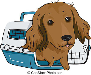 Dog Crate - Illustration of a Long Haired Dachshund in a...