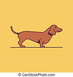 Dog Dachshund, vector illustration