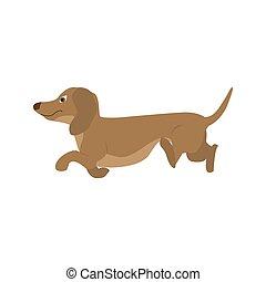 Dog Dachshund, vector illustration in cartoon style