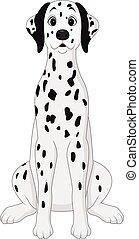 dog, dalmatian, spotprent, zittende