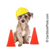 dog, de arbeider van de bouw