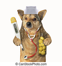 Dog doc with medical instruments 2