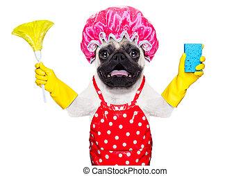 dog doing household chores - pug dog doing household chores...