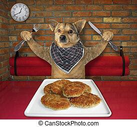 Dog eats fried cutlets in restaurant