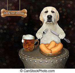 Dog eats in restaurant for dogs
