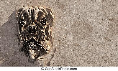 dog face sand bottom