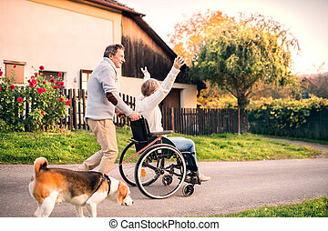 dog., fauteuil roulant, couple, personne agee, promenade
