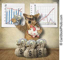 Dog financier with a piggy bank