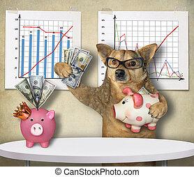 Dog financier with piggy banks