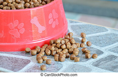 dog food in red bowl