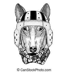 DOG for t-shirt design Wild animal wearing rugby helmet...