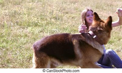 dog German Shepherd female schools - woman beautiful rentals...