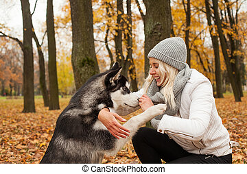 Dog gives a woman the paw in autumn park outdoors
