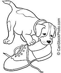dog gnaw shoe,cartoon picture isolated on white background ....