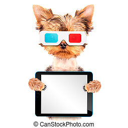 dog going to the movies with tablet pc