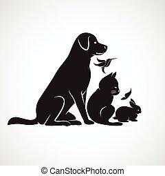 dog, groep, huisdieren, vogel, kat, -, vrijstaand, vector, achtergrond, wit konijn