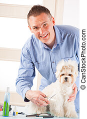 Dog grooming - Smiling man grooming a dog purebreed maltese.