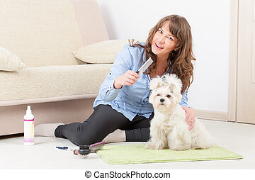 Dog grooming - Smiling woman grooming a dog purebreed ...
