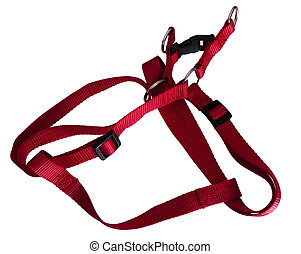 Dog harness in red, isolated - Isolated over white