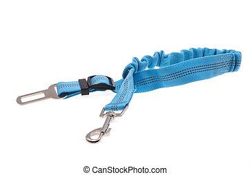 dog harness isolated on white background
