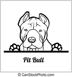 dog head, Pit Bull breed, black and white illustration