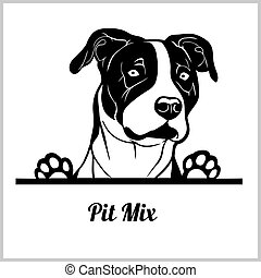 dog head, Pit Mix breed, black and white illustration