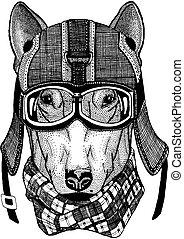 Dog Hipster animal wearing motorycle helmet. Image for...