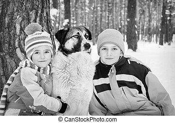 dog., hiver, neige-couvert, jeu, forêt, enfants
