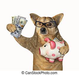 Dog holding a piggy bank