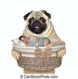 Dog holds basket with sleeping man 2