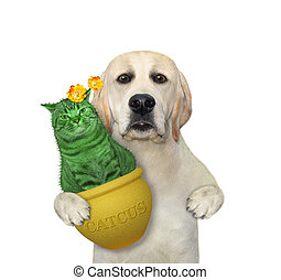 Dog holds cat cactus in yellow pot