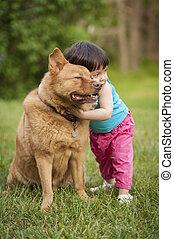 Dog hugged by toddler
